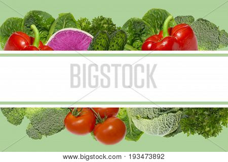 Vagetables consept.Empty blank.Healthy eating.Frame of green salad leaves and vegetables