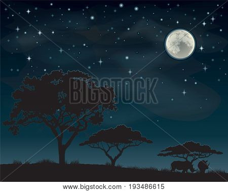 Two rhinos standing under Acacia trees silhouetted against a starry African sky