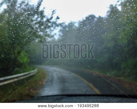 Adventure to jungle./View through front shield covered by raindrops./Ran on the windscreen of a car