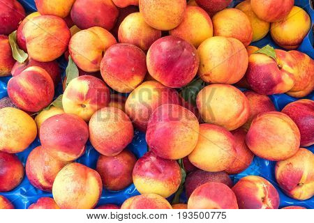 Nectarines for sale at a market in Palermo, Sicily