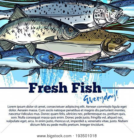 Fresh fish market poster for seafood shop or fishing store. Vector design of fisher big catch of sea food and fishes tuna, mackerel or marlin and sea carp or river pike and crucian or ocean flounder