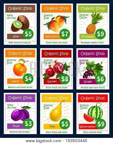 Fruits price cards of exotic kiwi, nectarine peach or tropical pineapple and juicy apple, garnet or grape and plum, pear and watermelon. Vector set for natural organic fruit shop or farm market sale