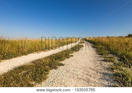 An old dirt road across the fields. Country road or street through an idyllic landscape in summer.