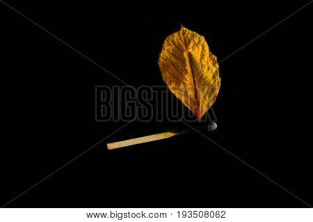 flame, decoration yellow Burning match hot darkness burn, dark, fire, wooden, art, kindle mesh flash
