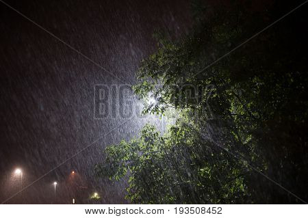 Heavy rainstorm in summer season under the street lights. Close up