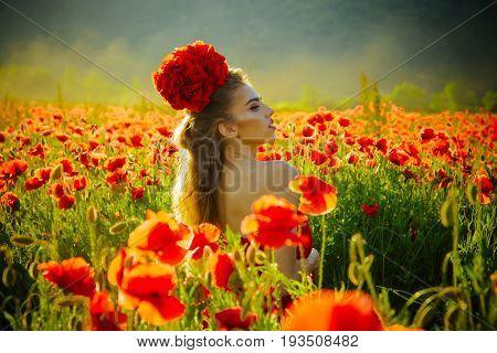 Woman Or Girl In Field Of Poppy Seed
