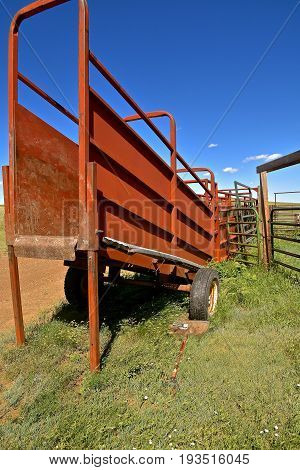 A portable loading chute for beef cattle is backed up to a corral at a western ranch.