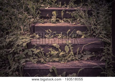 Abandoned wooden stairs in a park in summer