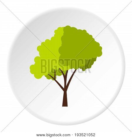 Green tree with fluffy crown icon in flat circle isolated vector illustration for web