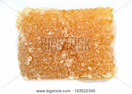 Honeycomb on white background close up image