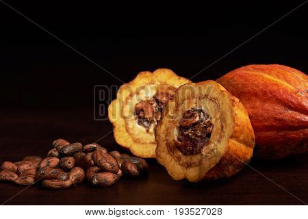 Cocoa dry seeds with cut cacao fruit on black background