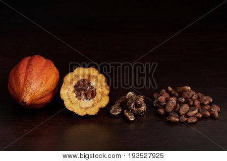 Different stages of cacao. Fruits, open cocoa pod and seeds on dark wooden background
