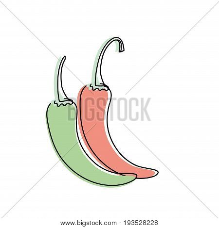 cayenne chili natural vegetable nutrition vector illustratioon