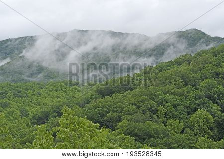 Morning Mist in the Smoky Mountains in the Great Smoky Mountains National Park in North Carolina