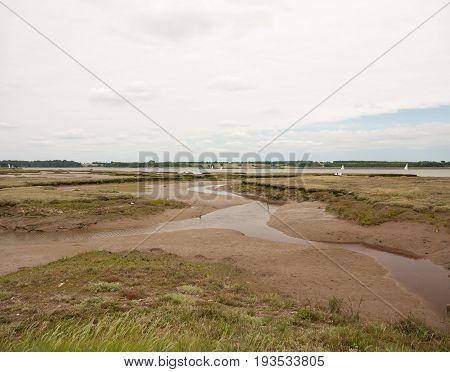 Stock Photo - Mud Flats Stream At Sea Side Coast Edge No People Seagulls