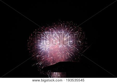 Colorful fireworks on the background of dark sky