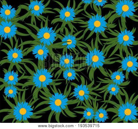 Much beautiful flowers of the blue colour on black background