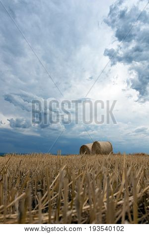Straw on the meadow. Summer storm clouds. Grain crop harvesting.