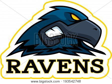 Cartoon Raven Mascot