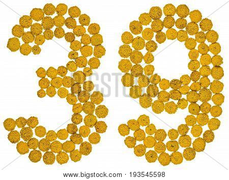 Arabic Numeral 39, Thirty Nine, From Yellow Flowers Of Tansy, Isolated On White Background