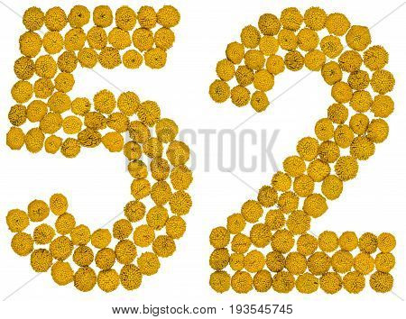Arabic Numeral 52, Fifty Two, From Yellow Flowers Of Tansy, Isolated On White Background