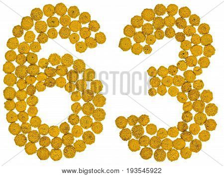 Arabic Numeral 63, Sixty Three, From Yellow Flowers Of Tansy, Isolated On White Background