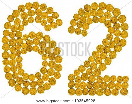 Arabic Numeral 62, Sixty Two, From Yellow Flowers Of Tansy, Isolated On White Background