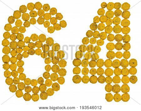 Arabic Numeral 64, Sixty Four, From Yellow Flowers Of Tansy, Isolated On White Background