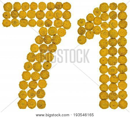 Arabic Numeral 71, Seventy One, From Yellow Flowers Of Tansy, Isolated On White Background
