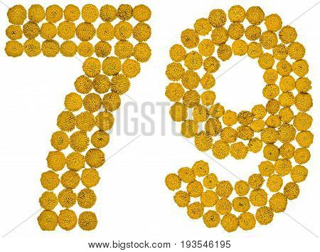 Arabic Numeral 79, Seventy Nine, From Yellow Flowers Of Tansy, Isolated On White Background