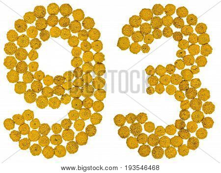Arabic Numeral 93, Ninety Three, From Yellow Flowers Of Tansy, Isolated On White Background