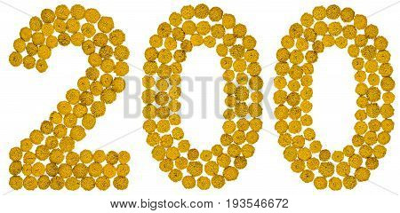 Arabic Numeral 200, Two Hundred, From Yellow Flowers Of Tansy, Isolated On White Background