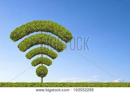 Tree wifi symbol, made by bushes shape.