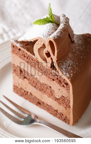 Delicate Piece Of Chocolate Cake Is Decorated With Mint Macro On A Plate. Vertical