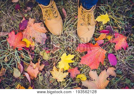 Casual unisex boots with colorful autumn fallen leaves. Autumn fall scene. Conceptual image of legs in boots and jeans on the autumn leaves. Lifestyle Fashion trendy style. Top view. Copy space.