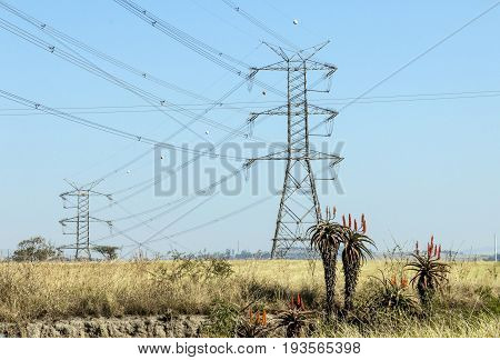 Electric Powerlines And Pylons On Winter Landscape