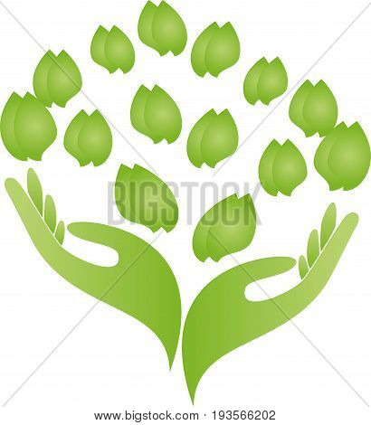 Two hands and leaves in green, wellness and naturopathic logo