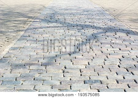 Grey cobblestone pavement in the sunlight in the day