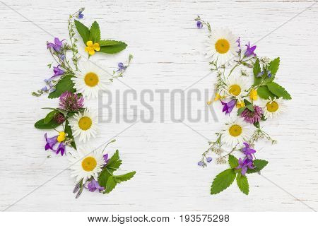 Top view on beautiful wild flowers on white wooden background. Frame wreath. Summer flowers leaves and petals. Clover daisy bell-flowers forget-me-not.