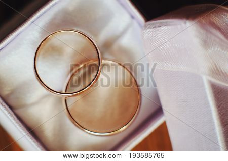closeup of two gold wedding rings in white textile box