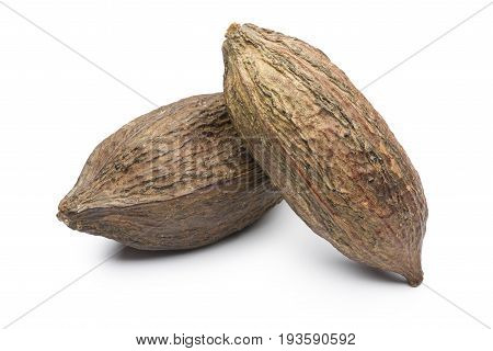 two ripe cocoa pod on white background