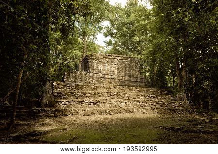 Muyil Ancient Maya Sites, Yucatan Peninsula In Mexico