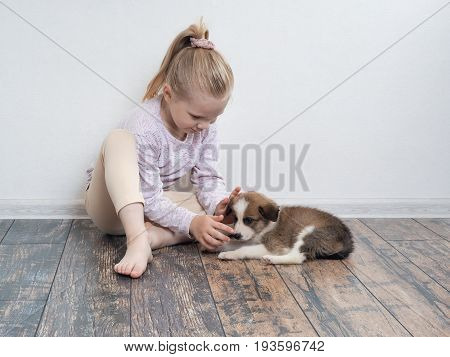 Little girl playing with a puppy. The child sits on the floor and petting the dog