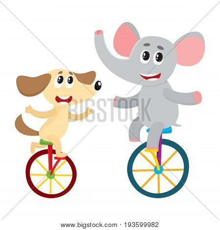 Cute little dog, puppy and elephant characters riding bicycles, unicycles, cartoon vector illustration isolated on white background. Baby dog, puppy and elephant characters riding bicycle, unicycle