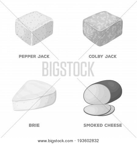 Brynza, smoked, colby jack, pepper jack.Different types of cheese set collection icons in monochrome style vector symbol stock illustration .