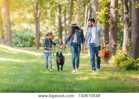 Young Happy Interracial Family With Dog Holding Hands And Walking In Sunny Forest