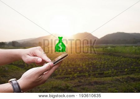 Hand holding smartphone with trade agriculture productdigital trade market agricultural product.