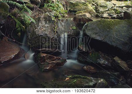 Piccolo ruscello fra le rocce e la vegetazione.