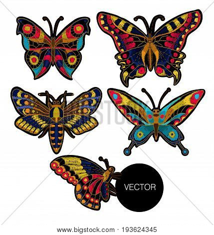 Butterfly vector embroidery for textile design Incects