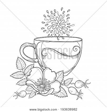 Vector cup of Rosehip herbal tea isolated on white background. Outline Dog rose flower, hips and leaves in contour style for summer design, medicine, ethnoscience, homeopathy, coloring book.